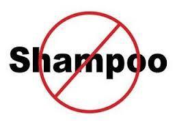 Photo courtesy of: https://growingsnowballs.wordpress.com/2014/04/18/no-poo-shampoo/