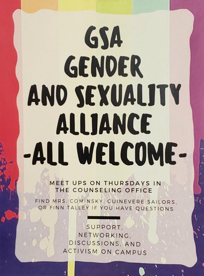 "Posters for the GSA club are hanging around the counseling office and in the halls. Counselor Dawn Cominsky is in charge of GSA, the Gender Sexuality Alliance at EHS, ""We talk about current issues in the LGBTQ community, we talk about current laws."